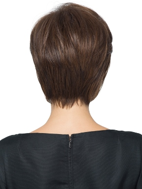 Wispy Cut Wig by Hairdo